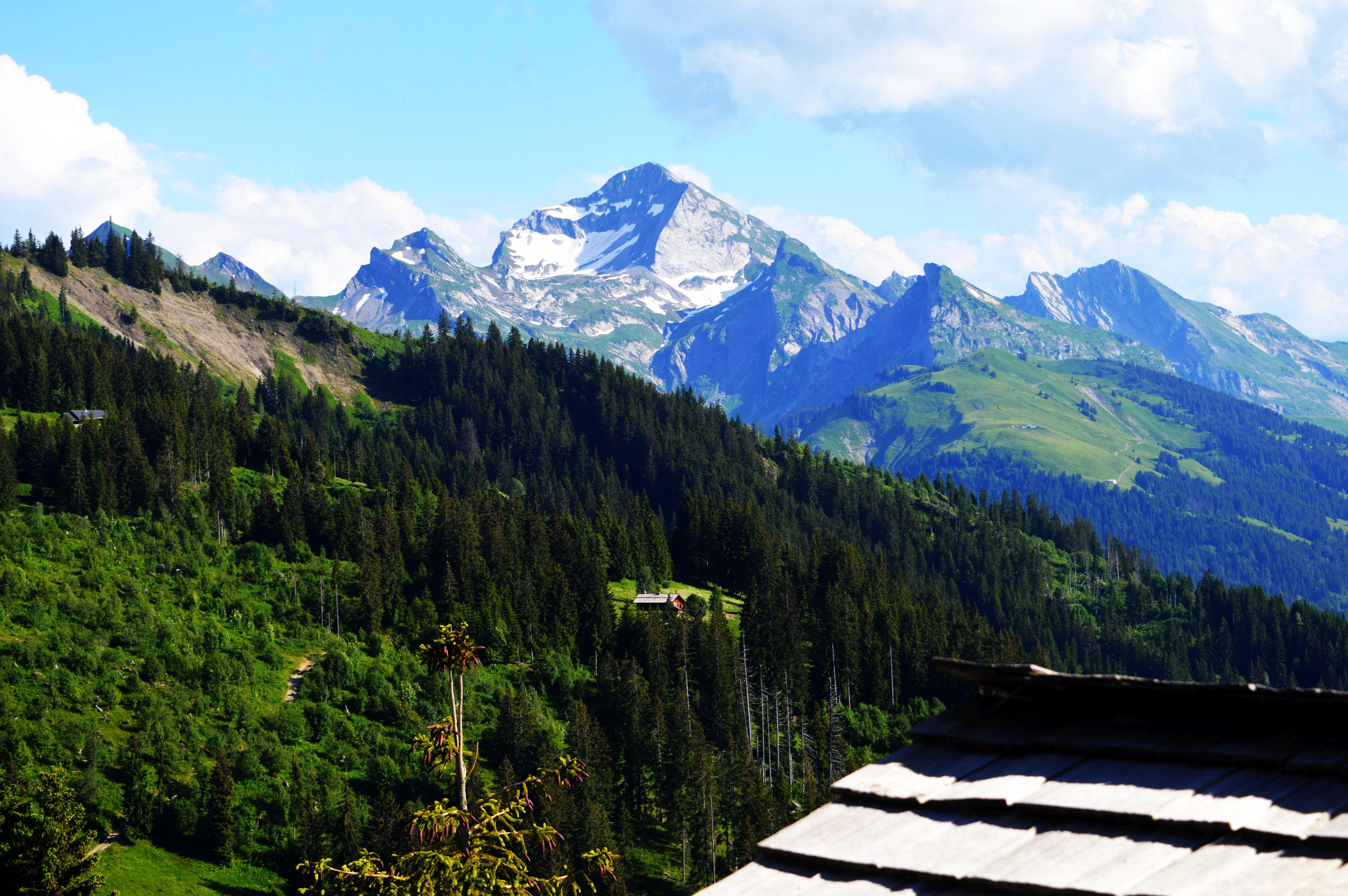 Sarbatoarea-Gustului-Gusturi-si-Destinatii-Franta-Savoie-Manigou-Marc-Veyrat-39