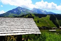 Sarbatoarea-Gustului-Gusturi-si-Destinatii-Franta-Savoie-Manigou-Marc-Veyrat-08